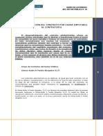 CAUSA IMPUTABLE.pdf