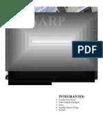 152283222-monografia-SUNARP.docx
