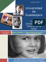 01 Sistema Familiar y Desarrollo Psicosocial 2012 A