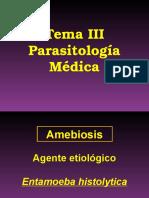 4.Ameba, Giardia y Trichomonas
