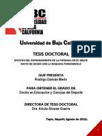 TESIS DOCTORAL Rodrigo Damián Merlo Oficial
