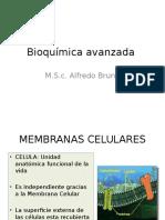 Tercera Clase de Bioquimica Avanzada m.s.c Bruno
