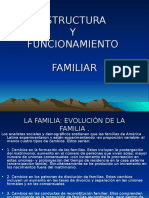 57887067 Estructura Familiar