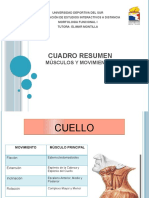 Cuadro_resumen_musculos_y_movimientos.pptx