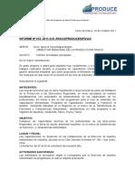 Informe Nº 013-2011-Curso Capac. Lima
