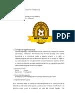 formulacion-t2-1