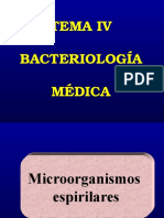 Bacterias Espirilares