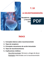 T10-Neurotransmisores-2