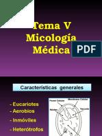 Micología 1