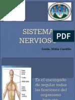 Sistema Nervioso Usac2016
