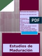 Estudios de Maduracion