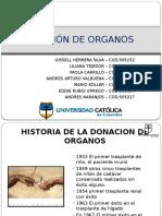 Donacion de Organos (1)