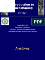 Neurorad-3 Spine Edit