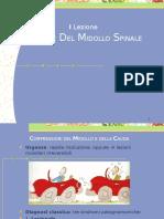 1. Compressioni  Midollari