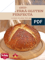 Ghid pentru painea fara gluten perfecta - 10 retete.pdf