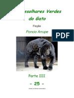 Cap. 25 - OS DESOLHARES VERDES DO GATO, por Pôncio Arrupe