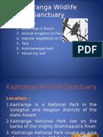 kaziranga-arindam