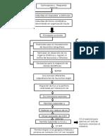 Quimoquinas y Respuesta Inmune