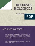 Ciências 8º Ano Recursos Biológicos - pawerPoint.pptx