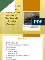 Recuperación de los Hidrocarburos en el Sector de.pptx