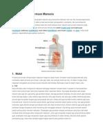 biomedik saluran pencernaan