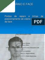 CRÂNIO E FACE.pdf