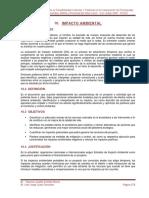10.0 Impacto Ambiental Ff