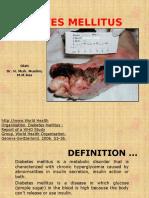 Diabetes Militus2