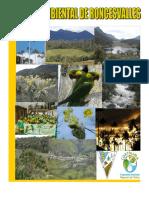 2011 Agenda Ambiental Del Municipio de Roncesvalles