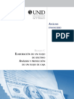 analisis-financiero-fne.pdf