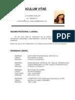 cv prof. (1)