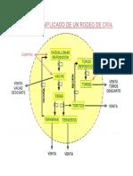 Sistema de Cría Bovina 2014 1