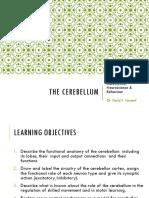 The-Cerebellum.pdf
