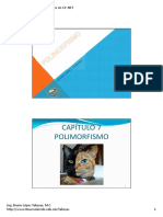 04.-Polimorfismo