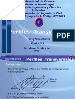 TEMA No8 Perfiles  Trasversales 2007.pptx