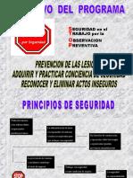 Principios Programa STOP