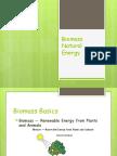 El Mundo de La Biomasa
