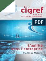 CIGREF 2015 Agilite Dans l Entreprise Modele de Maturite