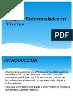 Plagas y Enfermedades en Viveros(1)