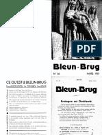 Bleun Brug 035