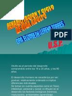 Adulto MFR 2014 II