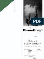 Bleun Brug 043 044