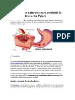 Tratamientos Naturales Para Combatir La Bacteria Helicobacter Pylori