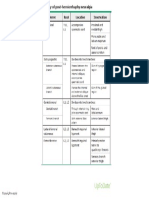 Etiology of Post Herniorrhaphy Neuralgia