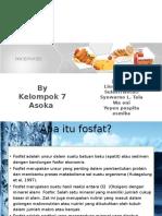 Fosfat New