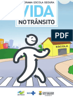 Programa Vida No Transito Web