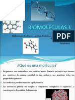 3 BIOMOLÉCULAS1final