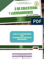 Síntesis de Prostanoides y colesterol.pptx