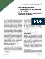 Mecanoreceptores.pdf