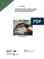 Informe Final Mdsjb
